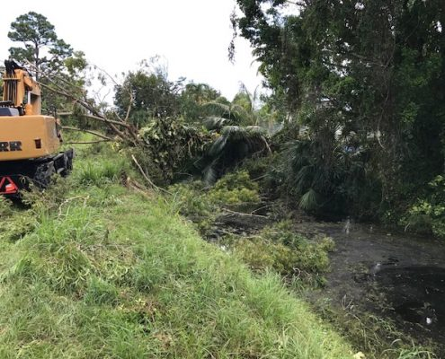 L-29 East of Military - removal of vegetation from canal
